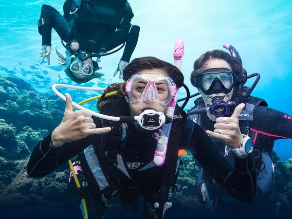 Scuba Diving Instructor Course Only 1900 Rm